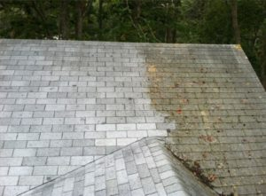 pressure washing roof in Leonia